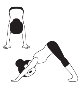 4 animal inspired yoga poses and their meanings